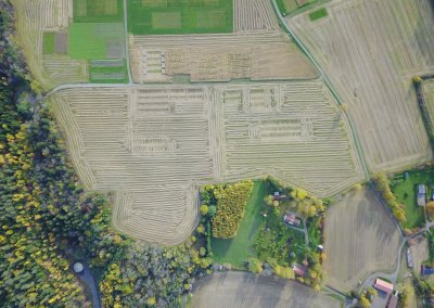 Aerial image after the harvest