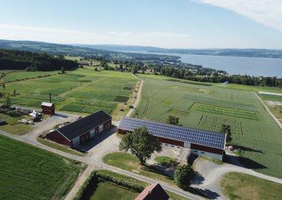 solarfarm; solar panels; photovoltaics; pv; apelsvoll; solar; farm; roof; barn;